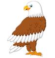 Cartoon eagle posing vector image