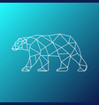 low polygon style of an polar white b vector image