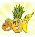 Smiling fruits 2 vector image