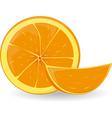 a slice of orange vector image vector image