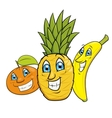Smiling fruits vector image