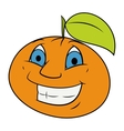 Smiling orange vector image