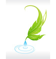 Beautiful leaf with water drop vector image