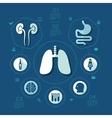 medicine flat infographic vector image
