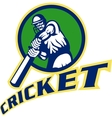 cricket batsman batting vector image