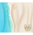 starfish background vector image