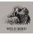 wild bird vector image vector image
