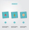 flat icons litchi ananas turnip and other vector image