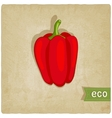 vegetable eco old background vector image
