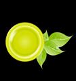 eco green leaf frame vector image vector image