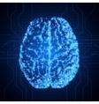 Brain Background with brain Brain neurons vector image