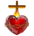 sacred heart vector image