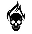 Skull on fire vector image vector image