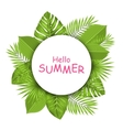 Summer Beautiful Card with Green Tropical Leaves vector image