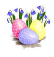 easter flower and eggs vector image
