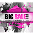 Big Sale Best Discoount in time web banner for vector image