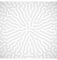 background with random bio lines vector image