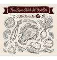 Vegetables sketch Set of elements - cabbage vector image