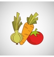 healthy food organic product isolated icon design vector image