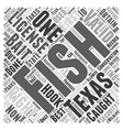 SF texas fishing tips Word Cloud Concept vector image
