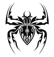 Spider tattoo vector image