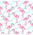 pink flamingo on chevron blue and white pattern vector image