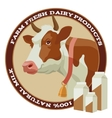 Cow and milk vector image