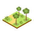 park alley with bushes and palm trees icon vector image
