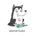 Siberian husky Dog character isolated on white vector image