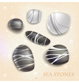 Sea stones vector image