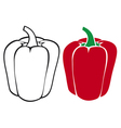 sweet red bell pepper vector image vector image