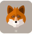 Animal Portrait With Flat Design Fox vector image