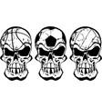 skull ball sports vector image