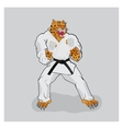 Martial arts fighter leopard in the white gi vector image
