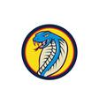 Cobra Viper Snake Head Attacking Circle Cartoon vector image