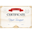 Certificate Of Completion Template vector image