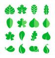 different leaf set icons design eco vector image