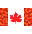 with maple leaf canada flag vector image