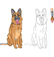 Coloring Book of smiling dog German shepherd vector image