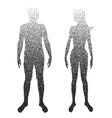 Halftone body Male and female Anatomy designed vector image
