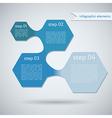 Hexagon Geometric Shape Infographic vector image