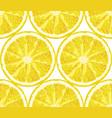 seamless pattern from lemon slices citrus vector image