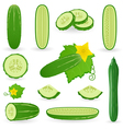 Icon Set Cucumber vector image vector image