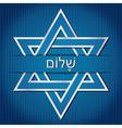 Jewish Celebration vector image