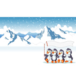 funny penguins holding flag with snow mountain vector image vector image
