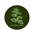 Label for seeds and seedlings of cucumber vector image