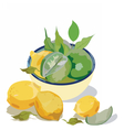 Fresh citrus fruits vector image