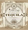 vintage tequila poster design vector image