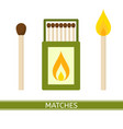 matches box icon vector image