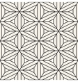 Seamless Black and White Lace Geometric vector image